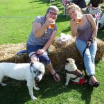 The Ashurst Fair & Fun Dog Show, held to raise funds for the hall in September each year.